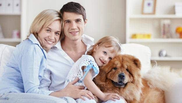 Wills & Trusts dog-young-family Direct Wills Kensington Gardens